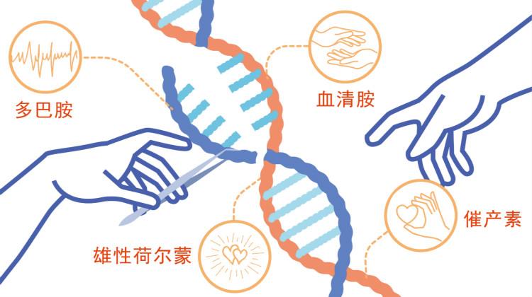 爱情基因检测(女性版):你最适合哪种异性,爱情基因早已写好答案