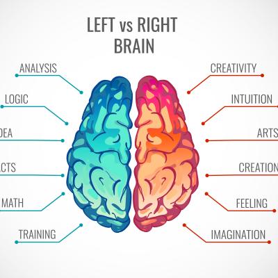 测你的左右脑分数